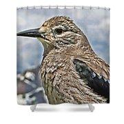 Mountain Bird Shower Curtain