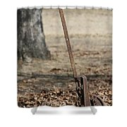 Mountain Bluebird On Well Pump V Shower Curtain