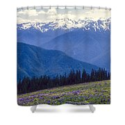 Mountain Color And Snow Shower Curtain