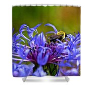 Mountain Cornflower And Bumble Bee Shower Curtain by Byron Varvarigos