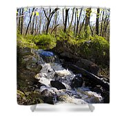 Mountain Creek In Spring Shower Curtain