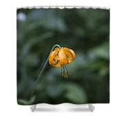 Mountain Flower Shower Curtain
