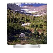 Mountain Goat 5 Shower Curtain