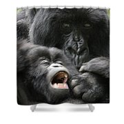 Mountain Gorilla Adf2 Shower Curtain