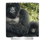 Mountain Gorilla Mother And Baby Shower Curtain