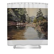 Mountain Home Creek Shower Curtain