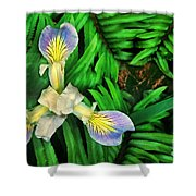 Mountain Iris And Ferns Shower Curtain