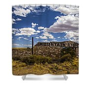 Mountain Lions Shower Curtain