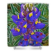 Mountain Lupine In Ancient Incan Pisac In Andes Mountains Above Sacred Valley-peru   Shower Curtain