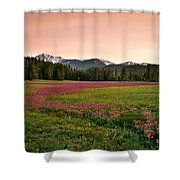 Mountain Meadow Color Shower Curtain