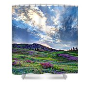 Mountain Meadow Of Flowers Shower Curtain