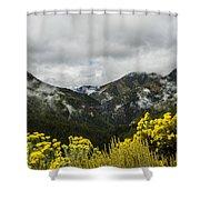 Mountain Rain Shower Curtain