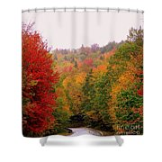 Mountain Road In Fall Shower Curtain