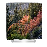 Mountain Side Colors Shower Curtain