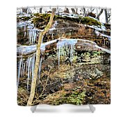 Mountain Spring Beauty  Shower Curtain