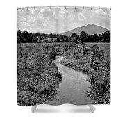 Mountain Valley Stream Shower Curtain