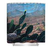 Mourning Dove Desert Sands Shower Curtain