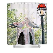 Mourning Doves Shower Curtain