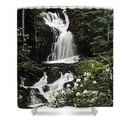 Mouse Creek Falls - Fs000675 Shower Curtain