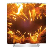 Mouth In The Flame Shower Curtain