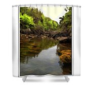 Mouth Of The Brook - Calm - Shallow Water Shower Curtain