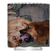Mouth To Mouth Shower Curtain