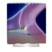 Movement Of Colors Shower Curtain