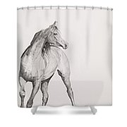 Moving Image Shower Curtain