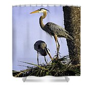 Mr. And Mrs. Heron Shower Curtain