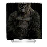 Mr. Big Shower Curtain
