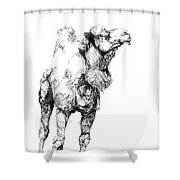 Mr Camel To You Shower Curtain