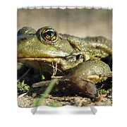 Mr. Charming Eyes. Side View Shower Curtain