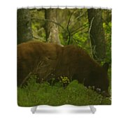 Mr Hungry Shower Curtain