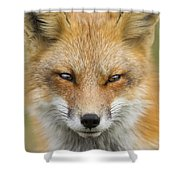 Mr Red Portrait Shower Curtain