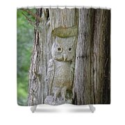 Mr Tingle's Owl Shower Curtain