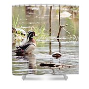 Mr. Wood Duck And Friends Shower Curtain