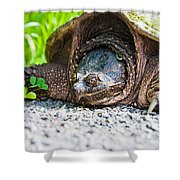 Mrs. Snapper Shower Curtain