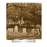 Mt Auburn Cemetery 13 Sepia Shower Curtain