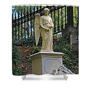 Mt Auburn Cemetery 3 Shower Curtain