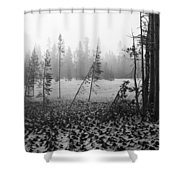 Mt Bachelor Road Shower Curtain