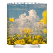 Mt Cloud Shower Curtain by Davorin Mance