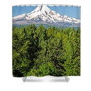 Mt. Hood Vertical Shower Curtain