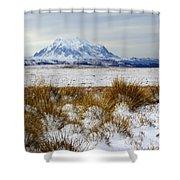 Mt Illimani In Winter Shower Curtain