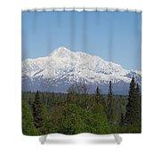 Mt. Mckinley 1 Shower Curtain
