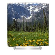 1m3613-mt. Patterson And The Snowbird Glacier Shower Curtain