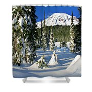 Mt Rainier At Reflection Lakes In Winter Shower Curtain