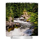 Mt. Rainier Waterfall Shower Curtain