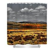 Mt. Silverhills In Silver Shower Curtain