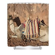 Mt. Sinai's Camel Shower Curtain