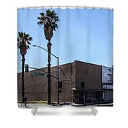 Mt. Vernon Street Shower Curtain
